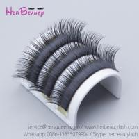 Mink Eyelash Extensions Natural Lash Extensions